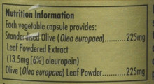 Solgar Olive Leaf Extract, 60 Capsules