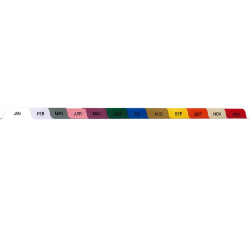 S/O Monthly 12 Tab Set Poly Dividers - Antimicrobial