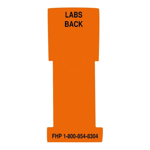 """Labs Back"" Stat Flag, Orange, Antimicrobial"