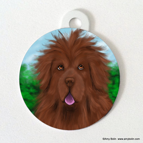 """Shaggy"" Brown Newfoundland Double Sided Pet ID Tag"
