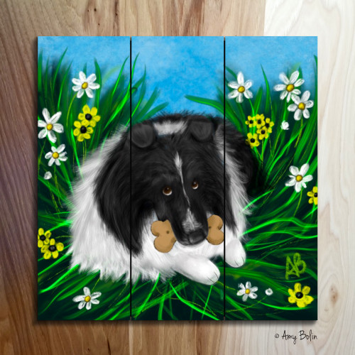 """A Secret Treat"" Bi Black Shetland Sheepdog Wooden Cottage Style Sign (SQUARE)"