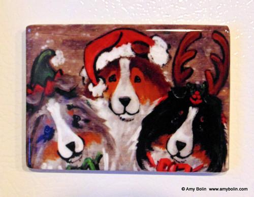 """""""Christmas Buddies"""" Blue Merle, Sable, Tri Color Sheltie Magnet"""