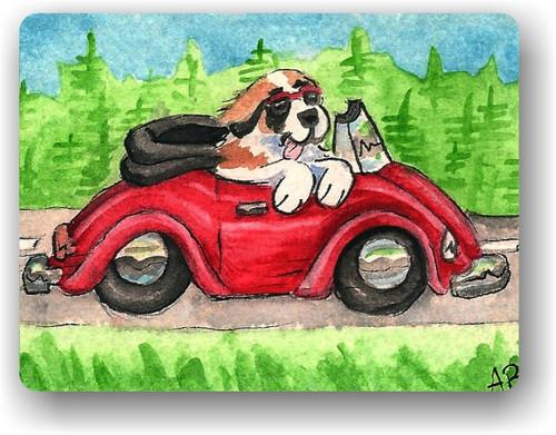 """""""Summer Is For Cruising"""" Saint Bernard Magnet"""