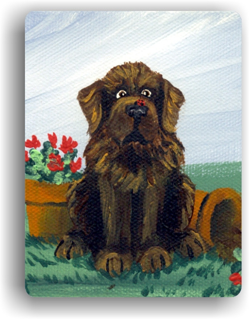 """A Little Visitor"" Brown Newfoundland Magnet"