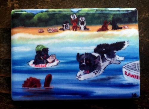 """""""Water Rescue 101"""" Black, Brown, Landseer Newfoundland Magnet"""