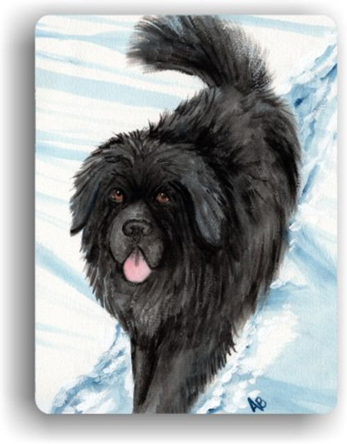 MAGNET · SNOW SHADOW · BLACK NEWFOUNDLAND · AMY BOLIN