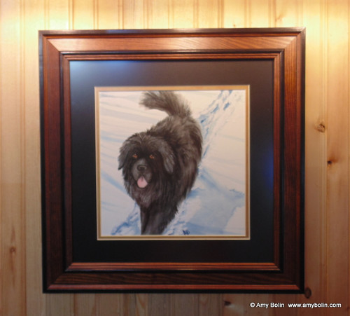 """Snow Shadow"" Black Newfoundland Original ART Watercolor Painting 10"" painting inside 14"" frame with mat (My very 1st full size watercolor!)  by Amy Bolin"