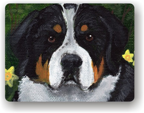 """""""Piper"""" Greater Swiss Mountain Dog Magnet"""