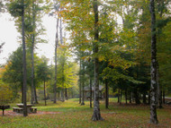 Three Great Campgrounds in the Daniel Boone National Forest