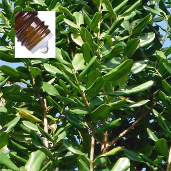 Bay West Indies Pure Essential Oil