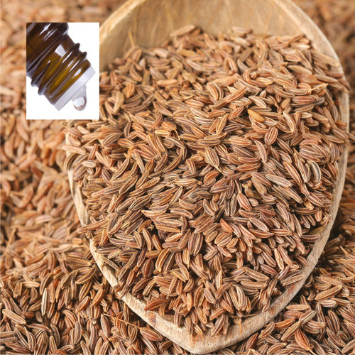 Caraway Seed Pure Essential Oil