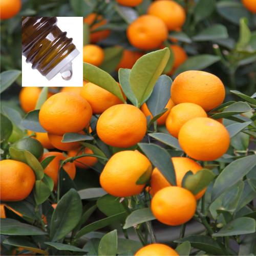 Mandarin Red Pure Essential Oil