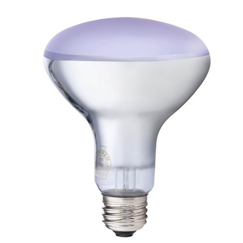 Chromalux Full Spectrum Lamp Frosted 75W Flood Lightbulb