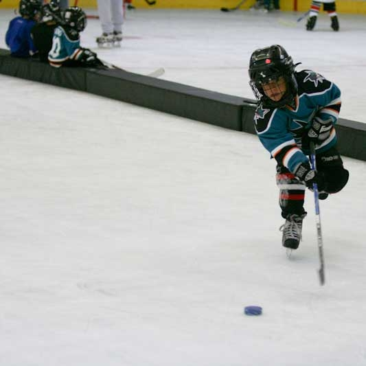 "xDividers Mini Mite 12"" Cross-Ice Divider System"