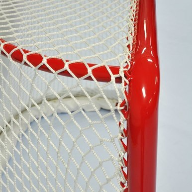 Official NHL CAMERA READY Goal