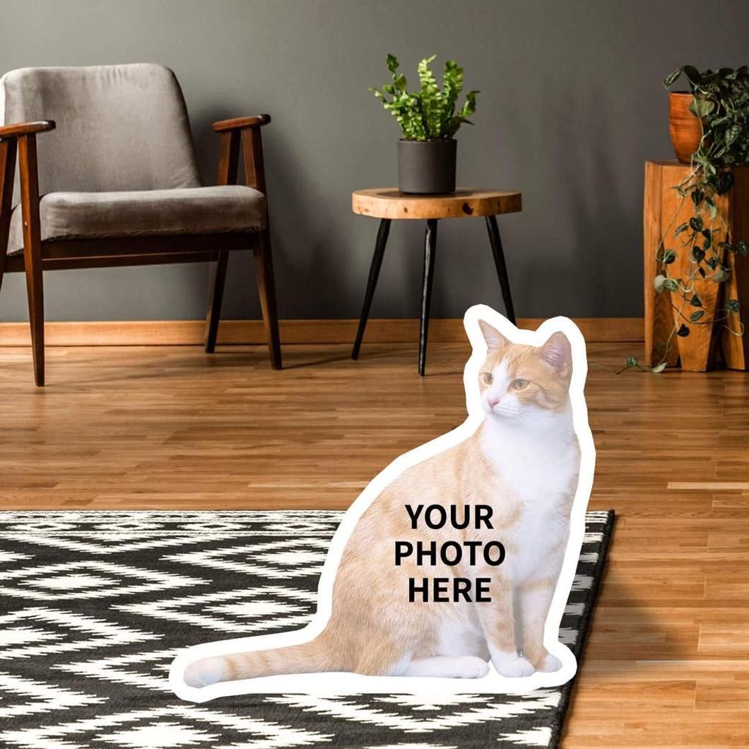 Standups for Cats (custom)