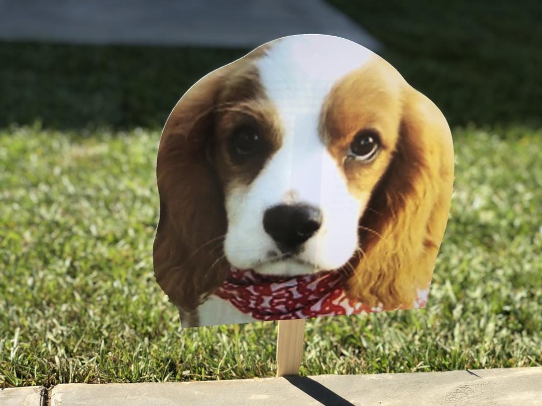 Custom Pet Head (five-pack)