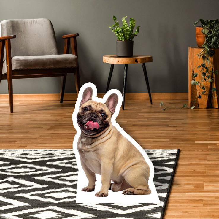 French Bulldog Standup