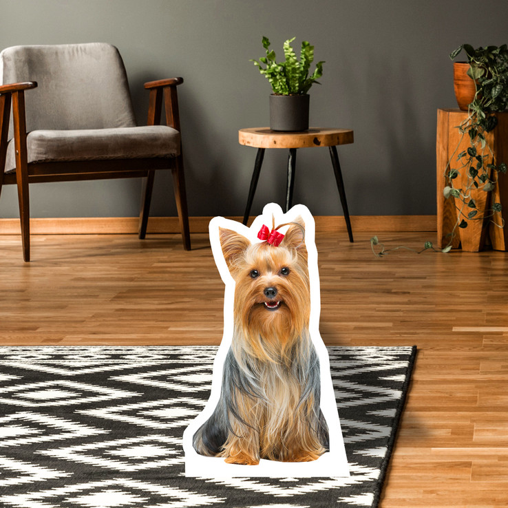 Yorkshire Terrier Standup