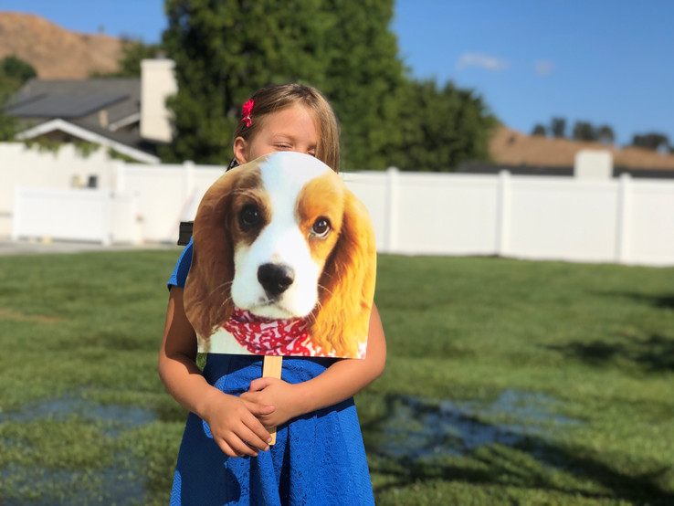 Big Head Cutouts for Pets