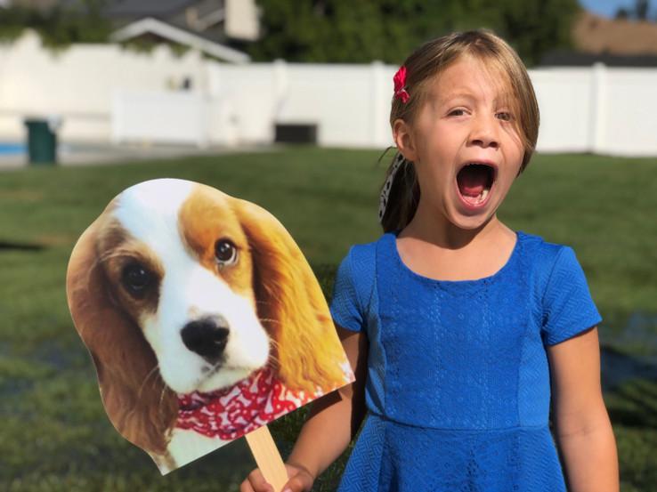 Custom Dog Head Cutouts | Take Your Dog With You Anywhere You Go