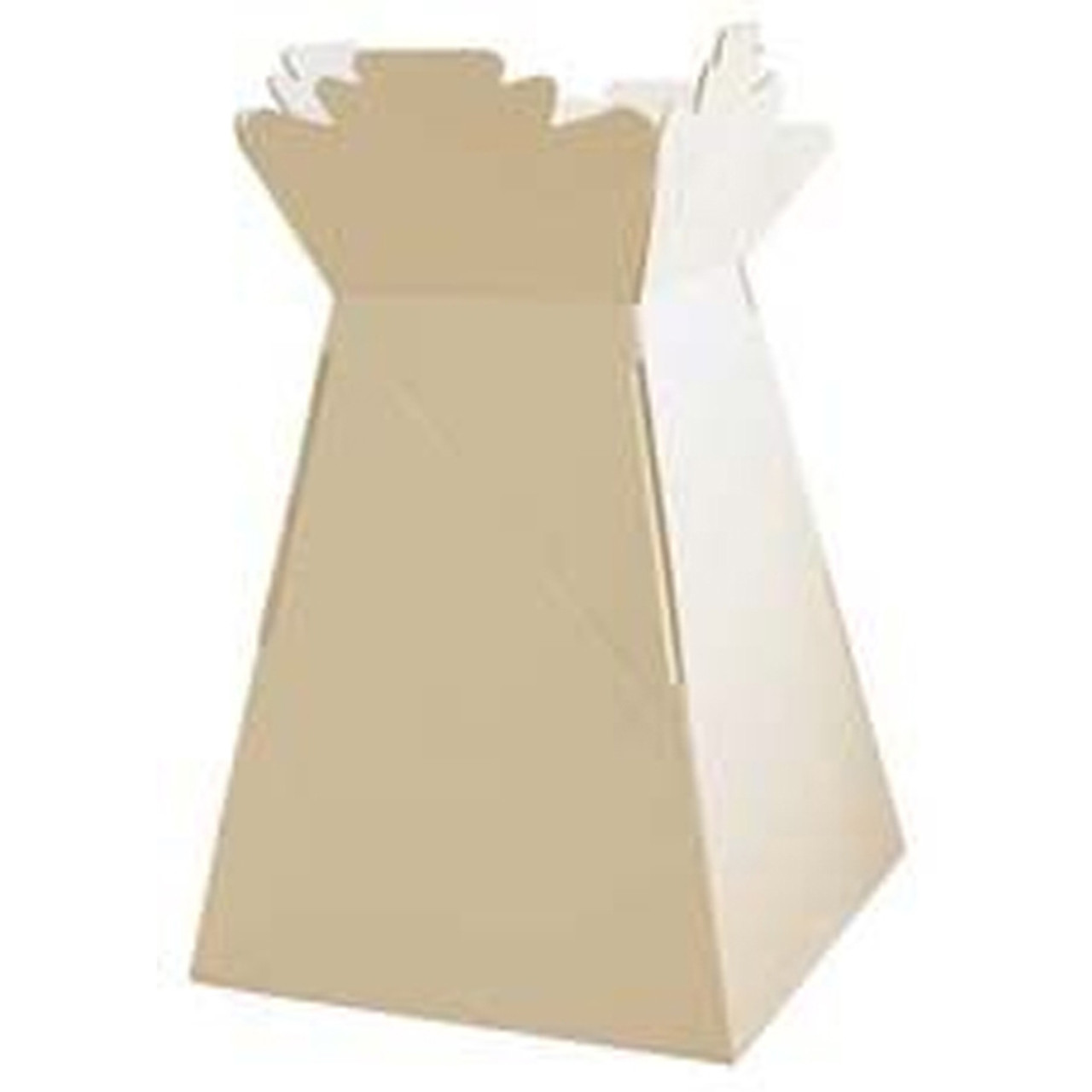 Living Vase Tall Flower Bouquet Delivery Boxes Cream