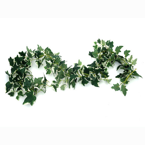 Ivy Garland Galaxy Variegated 183cm