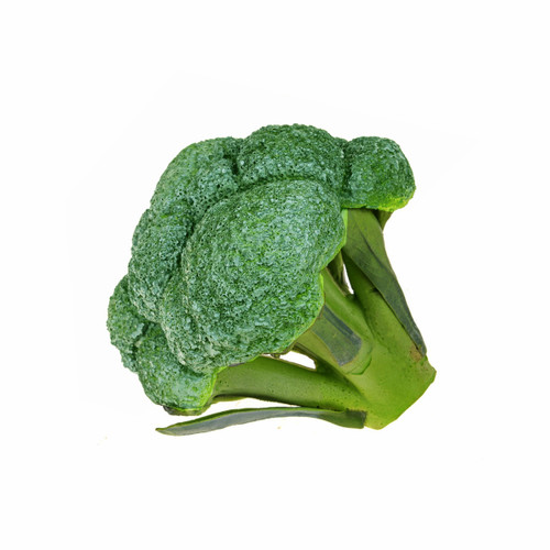 Artificial Vegetable Broccoli Head 17cm Diameter