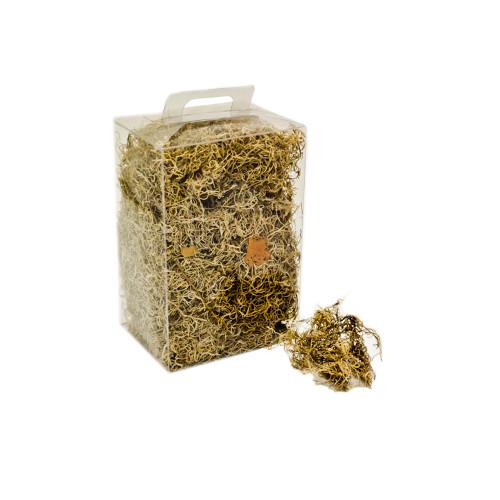 Natural Forest Moss 300g Box