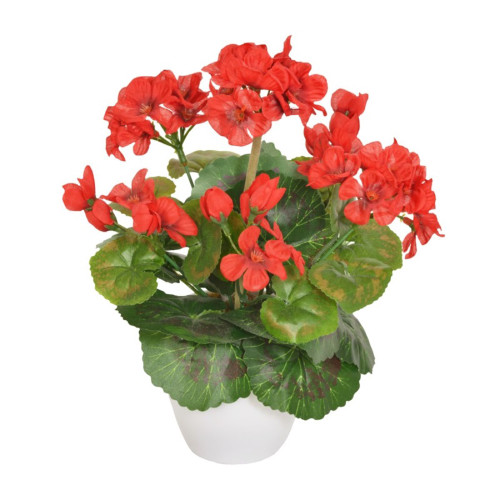 Artificial Mini Geranium in White Pot  Red
