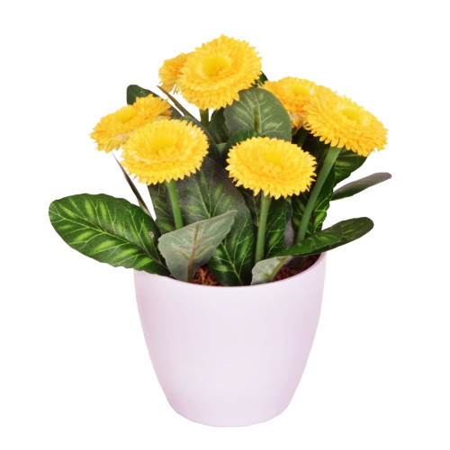 Artificial Bellis Daisy in a Pot 7 Heads Yellow