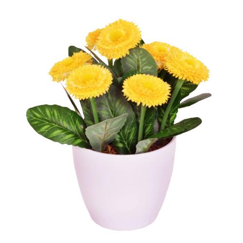 Artificial Bellis Daisy in a Pot 7 Heads Yellow