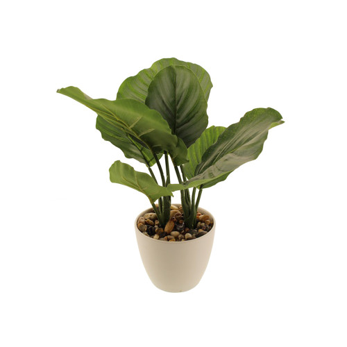 Artificial Calathea Orbifolia House Plant