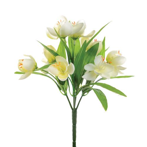 Crocus Bunch Cream White 23cm
