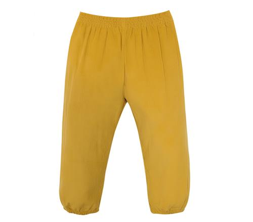 Logan Elastic Pant- Harvest Yellow
