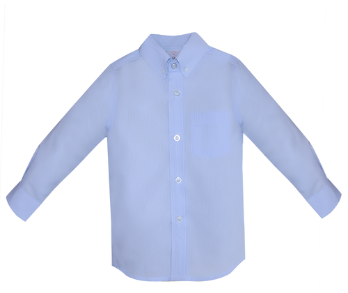 Brother Button Down Shirt- Blue