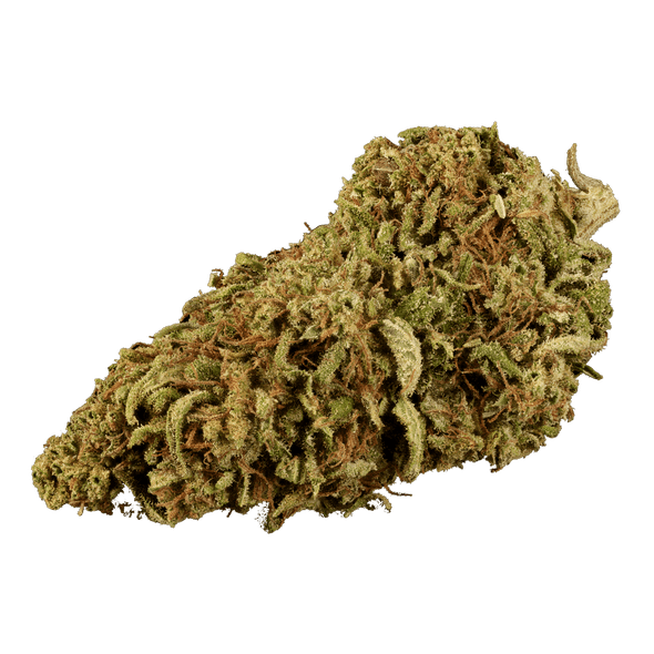 Silver Haze strain is known by its potent cross between Skunk x Northern Ligths #5 x Haze strains. Silver haze has an earthy pine aroma. Also, distinguish for its clear headed, happy, creative and energetic effect.