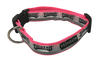 Philadelphia Eagles Dog Collar - Reflective - Pink Nylon - Super Strength - NFL Team Logos
