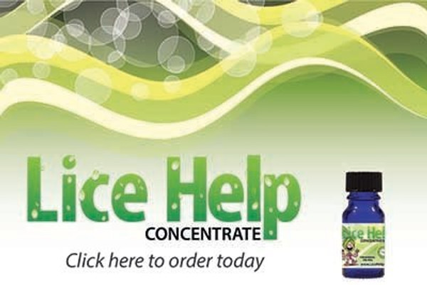 "Head Lice Remedy is our concentrate with all the active ingredients you need to treat 6-7 people for multiple treatments. It is a small bottle of all natural, botanical products that kills head lice and nits.   Head Lice Remedy is the active ingredients found in our flagship product Head Lice Cure and it arose out of a need to cheaply ship ship our main, fully-mixed product overseas. Head Lice Cure is almost 5 lbs. and expensive to ship overseas. In contrast Head Lice Remedy is 4oz. and easily ships anywhere.  It took a while but it finally dawned on us to release the product domestically. We decided that if we could get the hard-to-find, specially heat activated active ingredients and put them in a small bottle we could save you a lot of money.  All you have to do is buy the Head Lice Remedy. We ship it and you dilute it with mineral oil (other names:baby oil, white oil, liquid paraffin) that you probably have at home or are available cheaply near you. You do the work. We save on packaging and a lot of shipping. It gets to you in 2 days (domestically). Everybody is happy.  Self-care action plan Using Head Lice Remedy will kill both lice and nits for you. Without nit-picking or any of the other problems related to it. The Head Lice Remedy that we have here on this site is specially formed so that you do not have to pick nits. It kills the head lice AND kills the nits.  ""We were running out of ideas and I tried your remedy, and to our amazement, it worked like a charm! Considering what I have paid for various other lice remedies, yours wasn't expensive at all"" Jan Underwood, Crystal Falls, Maryland  Usually the most frustrating process of head lice is getting rid of the nits. If the nots hatch, you have head lice all over again in about a month. It is desperately important to kill the nits. Let Head Lice Remedy do it for you!  HEAD LICE REMEDY  What you will love:  No nit picking formula Non Pesticide You mix it up at home Mixes with Mineral Oil or Baby oil Inexpensive No More harmful shampoos No More embarrassment  Head Lice Remedy is a scientifically developed head lice formula that you mix with common mineral oil (already mixed product here). It is easy and inexpensive to mix, easy to treat and easy to remove (you use common dishwashing liquid!) It kills head lice and their nits - so you do not have to nit pick. There are no dangerous pesticides like those found in ""natural"" head lice solutions - although ours is natural.  We offer no crazy head lice remedies like putting mayonnaise, olive oil, or petroleum jelly on your child's head.  Price?....well, how about $3.33 per person!   Bottle shown above, has enough active ingredients to treat 6 children/adults with THICK hair to the shoulders!"