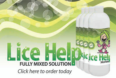Lice Help - 4 bottle Fully Mixed Natural Head Lice Treatment kit