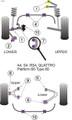 Powerflex Black Front Lower Shock Mount - S4 Avant (1995-2001) - PFF3-201BLK