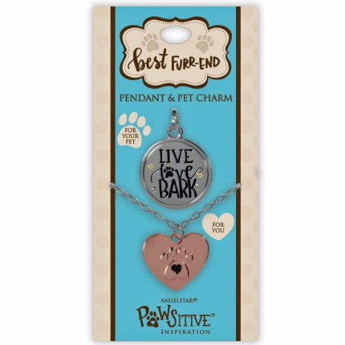 AngelStar Necklace Pendant Pet Dog Collar Charm Tag set 16101