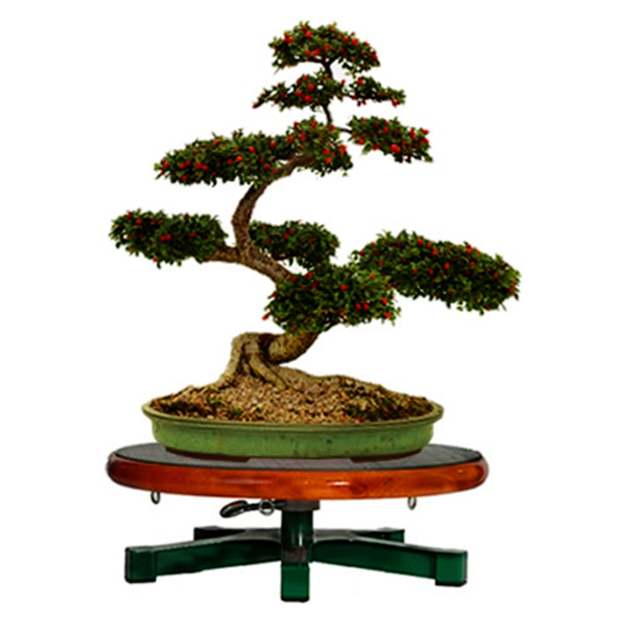 Bonsai Turntable Table Top Workstand Bonsai Outlet