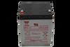 Yuasa NP4-12 Backup Battery
