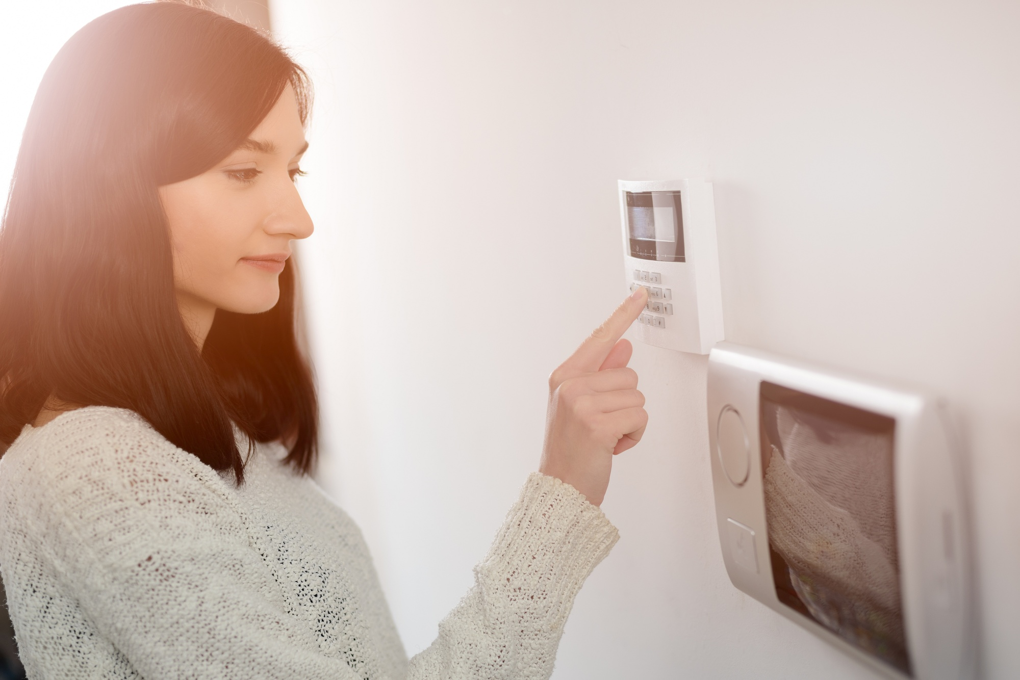The Ultimate Guide to Different Types of Security Systems
