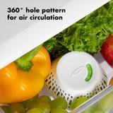 OXO GreenSaver Crisper Insert 2 Pack