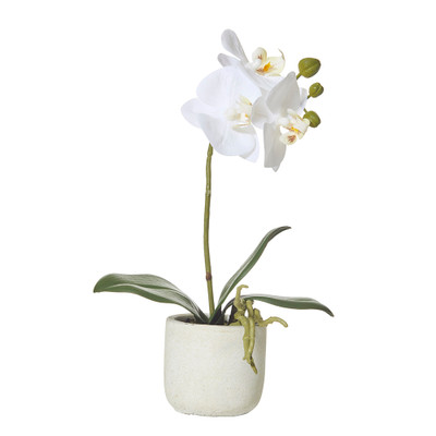 Faux Potted Butterfly Orchid in Ceramic Pot