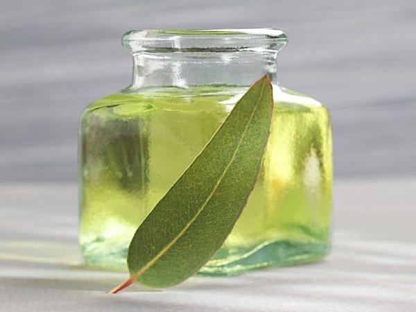 Eucalyptus Scent per oz.