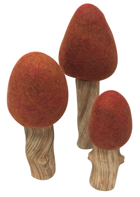 These unique trees have natural liana wood with felt tops. The wood is natural and each piece is different. Set of 3 pieces.