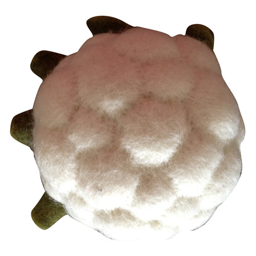 Papoose cauliflower is part of our extensive felt food range.